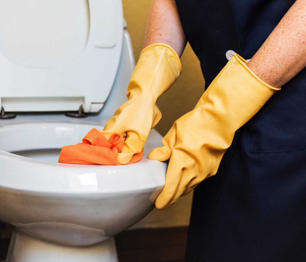 Chambermaid cleaning a toilet seat