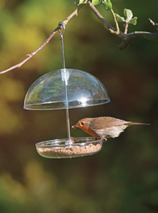 Jacobi Jayne Clear Hanging Bird Feeder