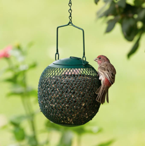 Perky-Pet Small Hanging Seed Ball Wild Bird Feeder