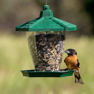 Perky-Pet The Chalet Wild Bird Feeder