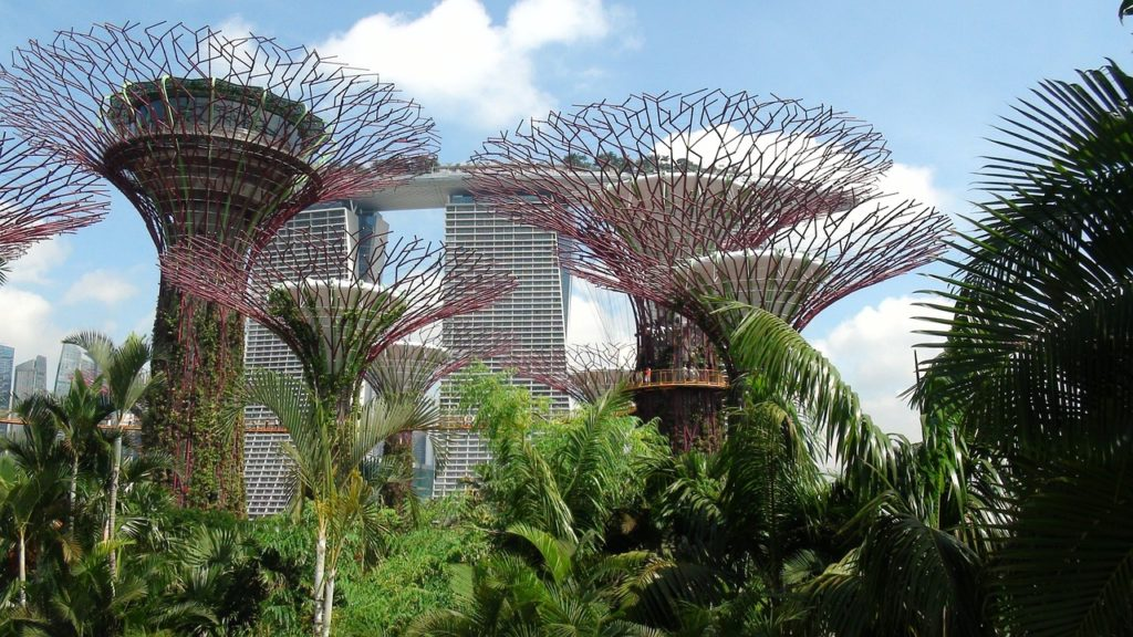 Solo holidays: Singapore Landmark Garden