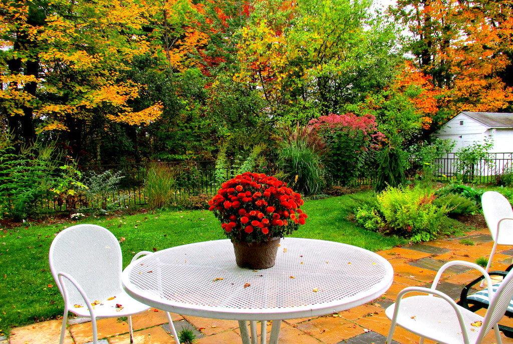 patio in the autumn