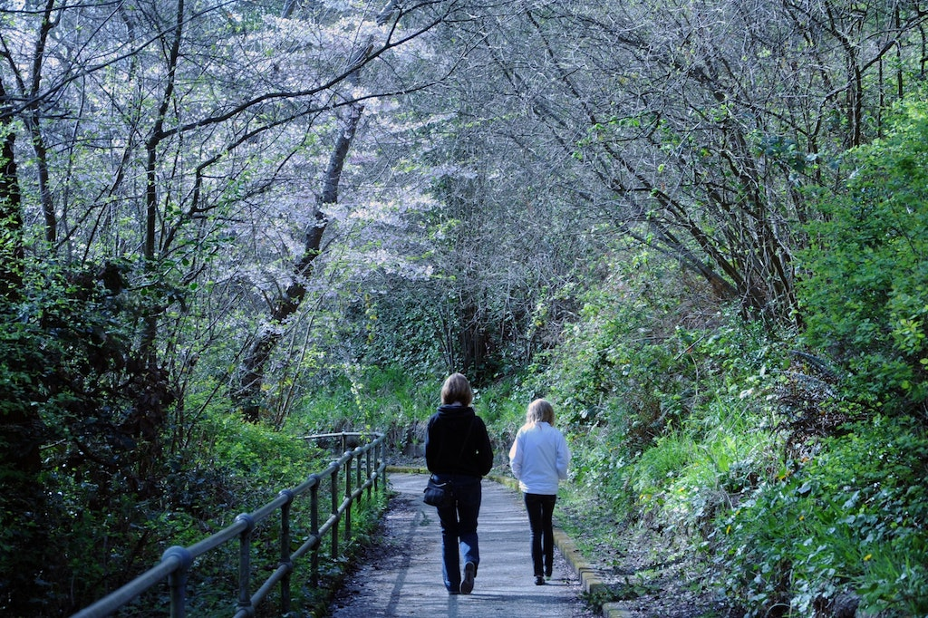 women walking in the park
