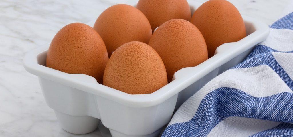 6 eggs in a reusable box